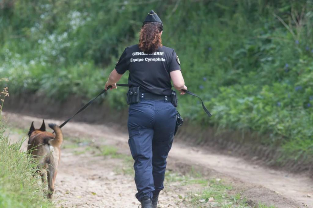 Une gendarme de la brigade cynophile avec un chien dans le Finistère. Image d'illustration.